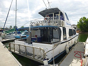 Cougar Catamaran for sale