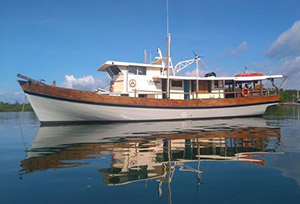Power Boats In Philippines For Sale Superyacht Luxury